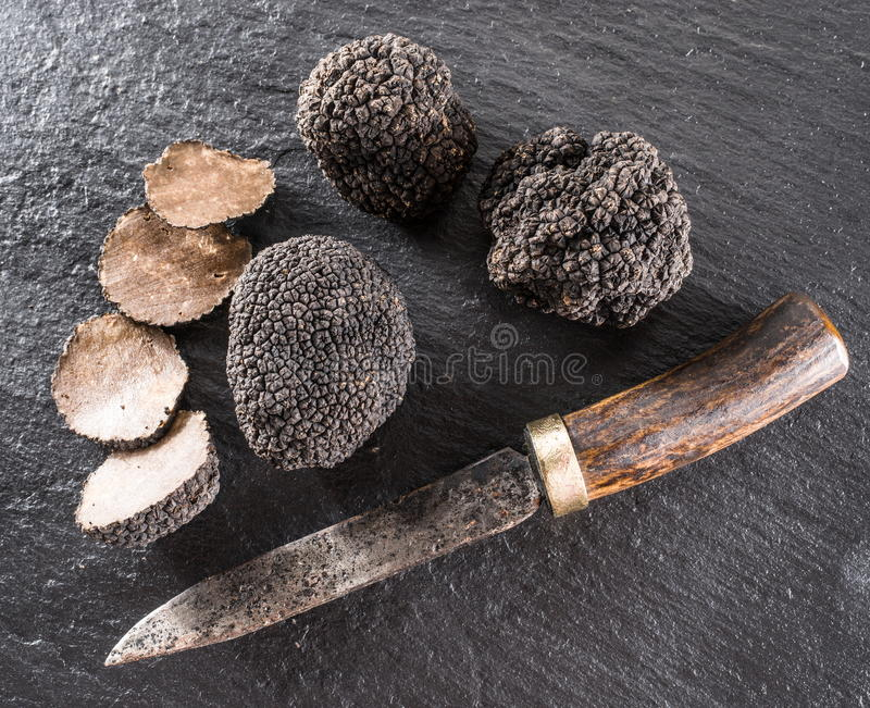 Black truffles and truffle slices on a graphite board. royalty free stock image