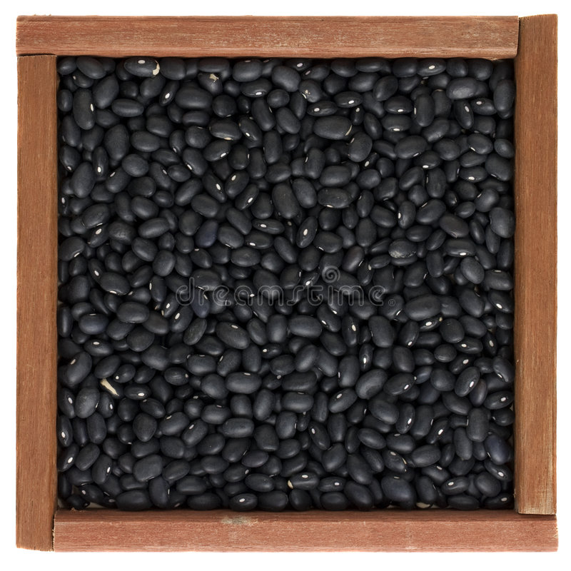 Black turtle beans in a wooden box royalty free stock photos
