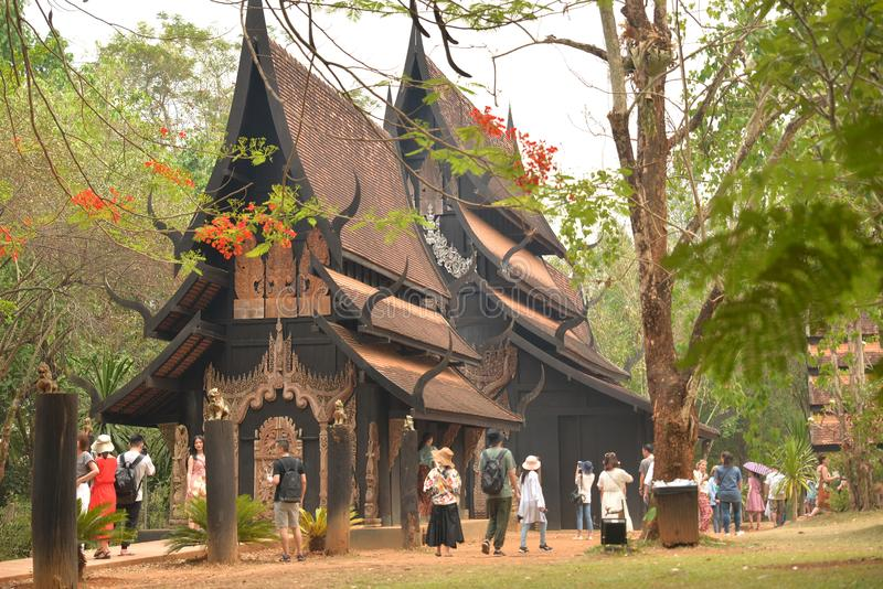 Chiang Rai in northern Thailand Black House Museum. Forest, crocodile. stock photo