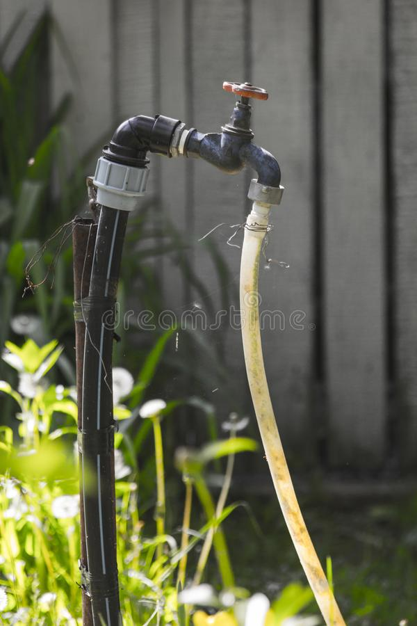 Black Valve Attached to a Hose royalty free stock photo
