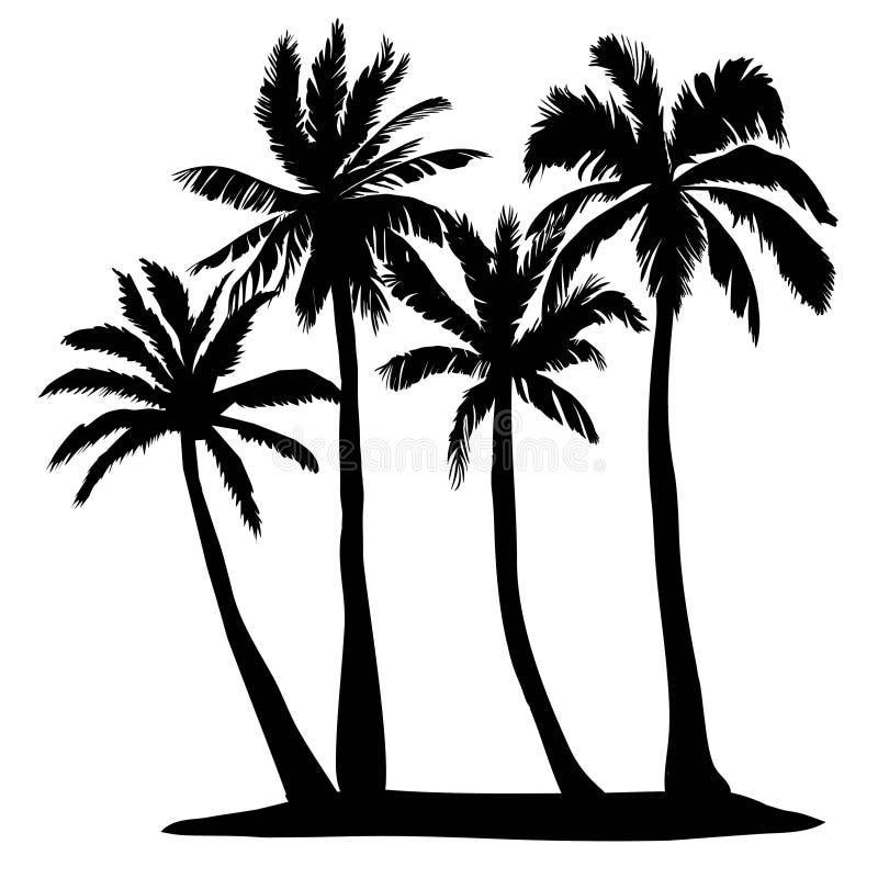 Black vector single palm tree silhouette icon isolated. Black vector palm tree silhouette icon isolated stock illustration