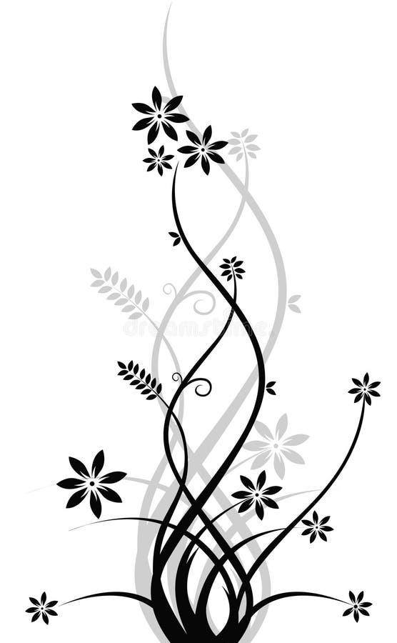 Black vine vector illustration
