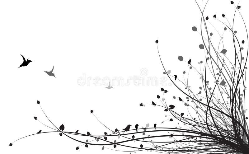 Black vine stock illustration