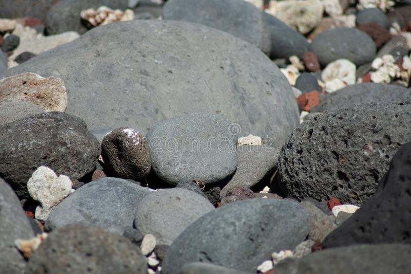 Black volcanic stones on sunny tropical beach royalty free stock photo