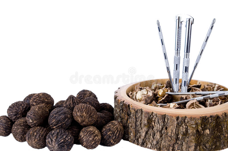 Black walnuts royalty free stock photo