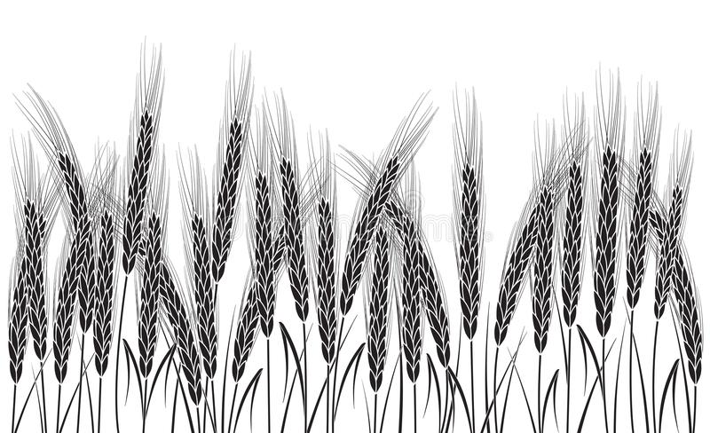 Image result for black and white wheat bundle clipart   Clip art pictures, Clip  art, Art pictures