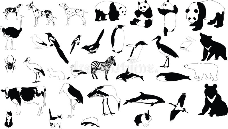 Black-and-white animals stock vector. Image of tattoo