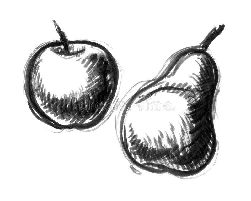 Apple and pear illustration stock photography