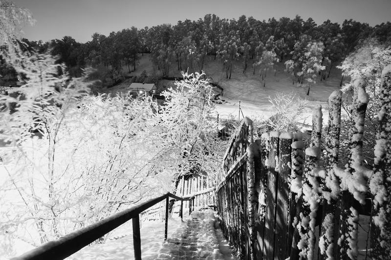 Black and white art photography monochrome fabulous night winter forest in the snow winter time heavy snowfall beautiful landscape stairs to the hill