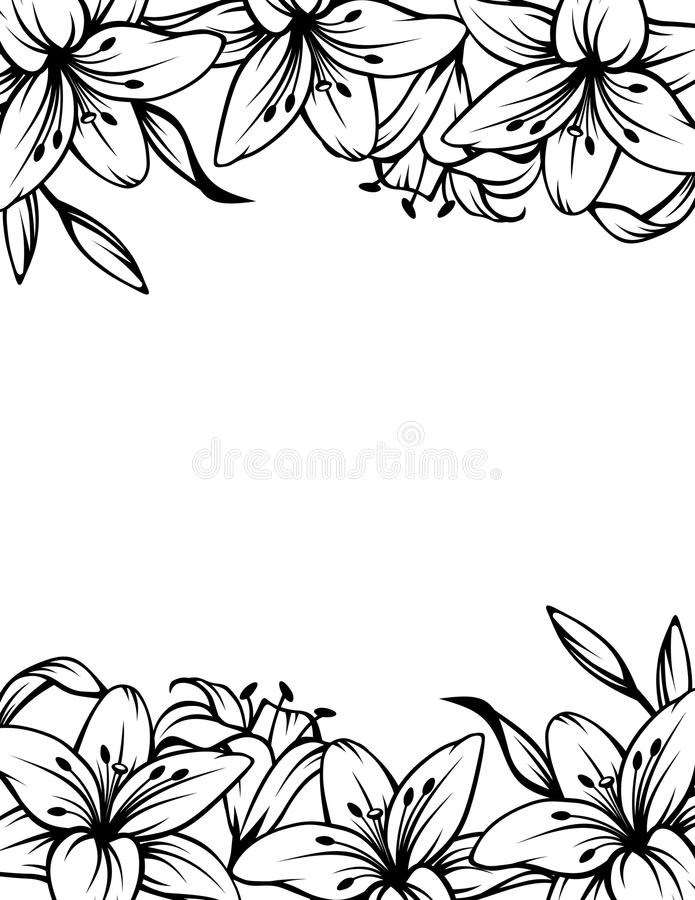 Black and white background with lily flowers. Vector illustration. vector illustration