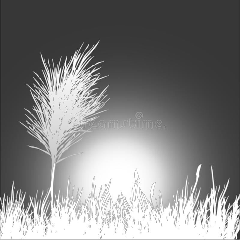 Black and white background . Vector Illustration. Black and white background for you. Vector Illustration vector illustration
