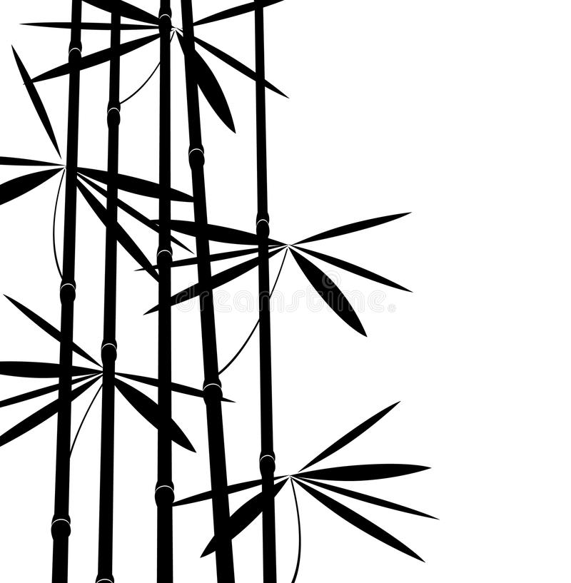Black and white bamboo royalty free illustration