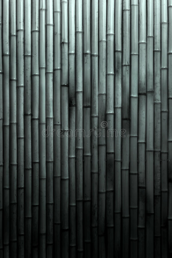 Black And White Bamboo Background stock photography