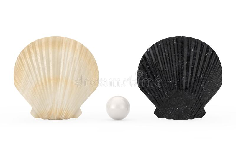 Black and White Beauty Scallop Sea or Ocean Shell Seashell with White Pearl. 3d Rendering vector illustration