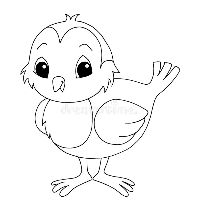 Black and white - bird vector illustration