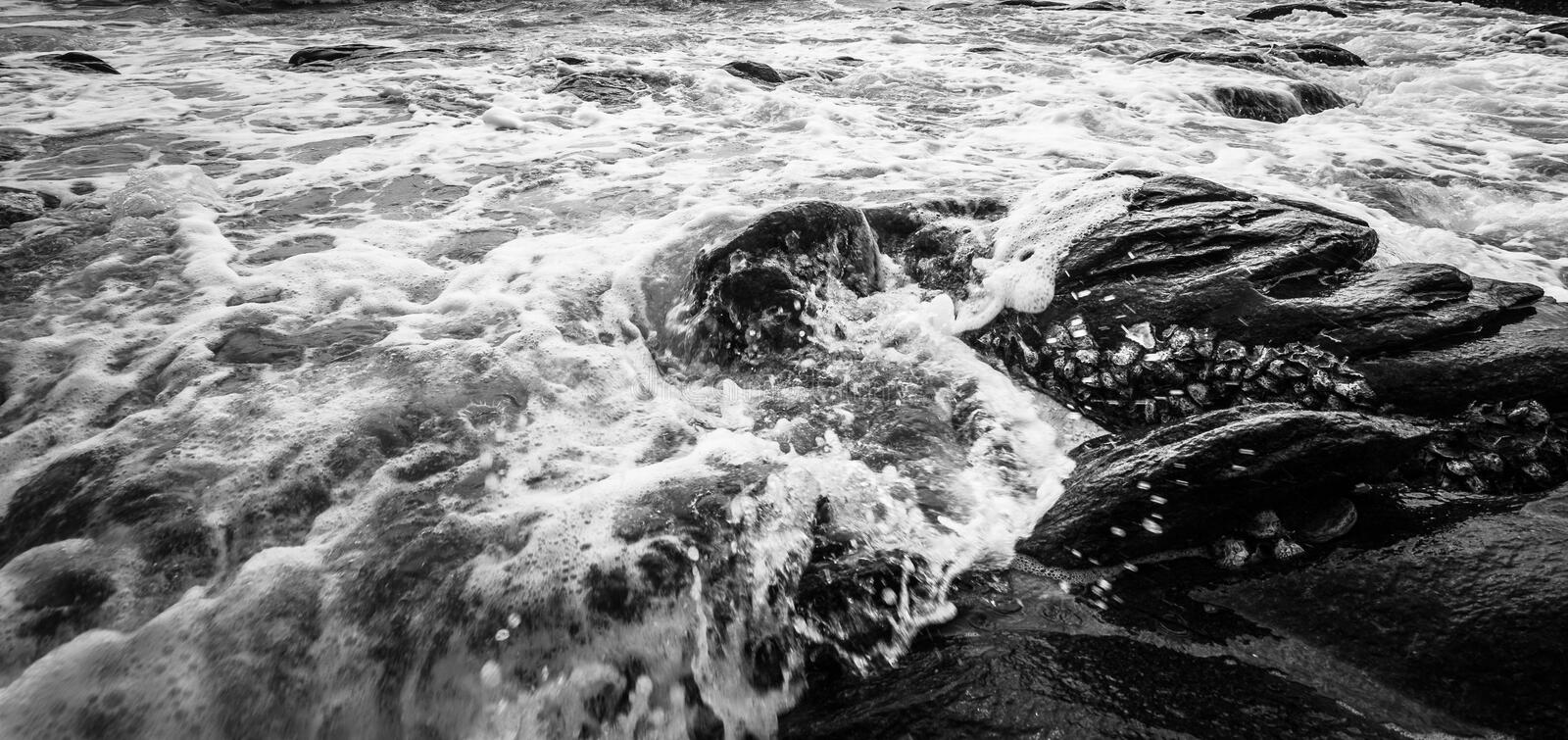 Black and white and blue sea royalty free stock images