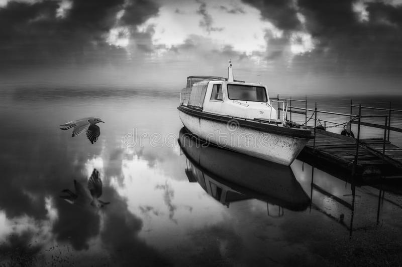 Black and White boat. On lake with bird flying royalty free stock images