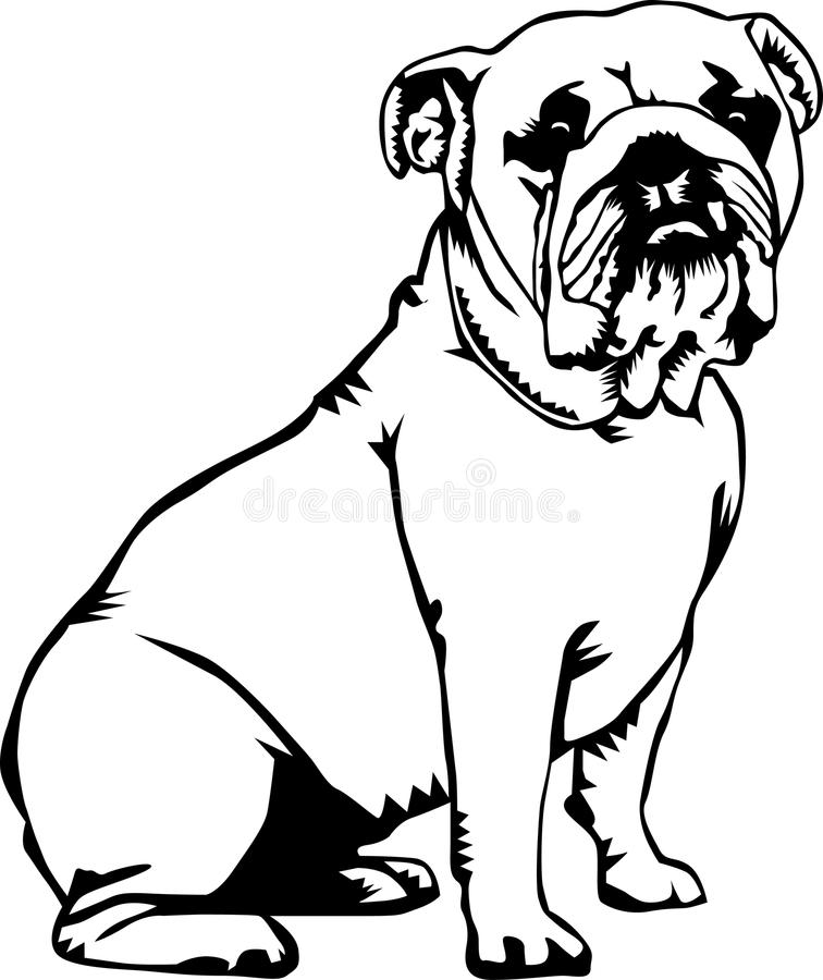 Black and white bulldog royalty free illustration