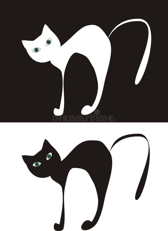 Black $ white cat royalty free stock photos