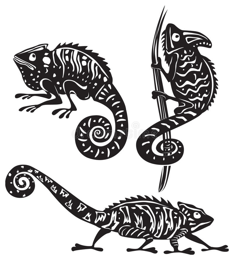 Download Black and white chameleon stock vector. Image of nature - 15344709
