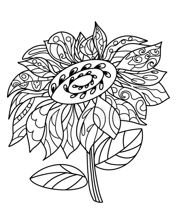 Free Sunflower Coloring Page, Download Free Clip Art, Free Clip ... | 900x712