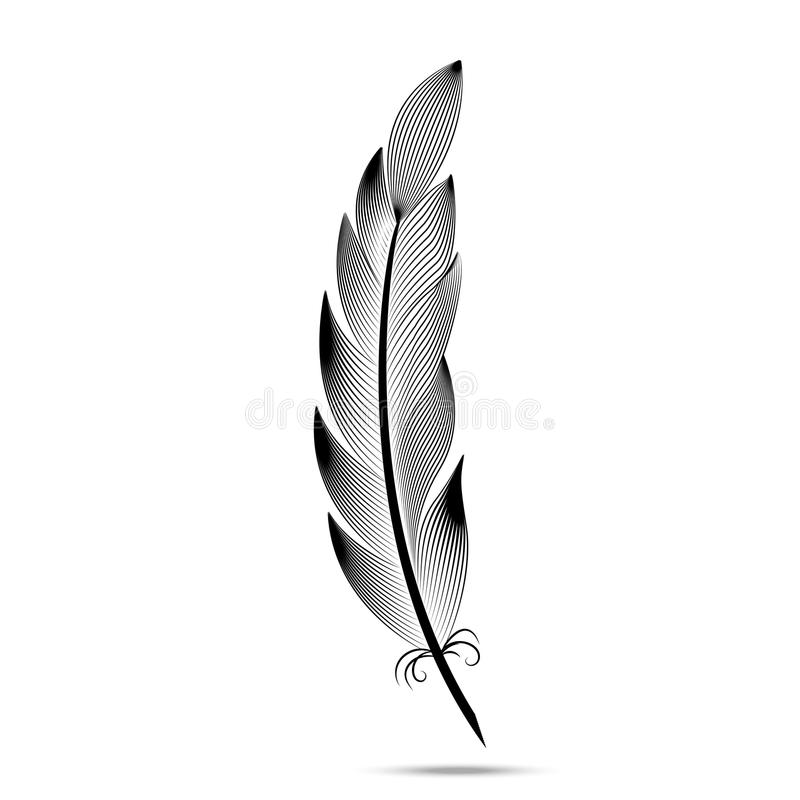 Black and white contour feather engraving vector illustration