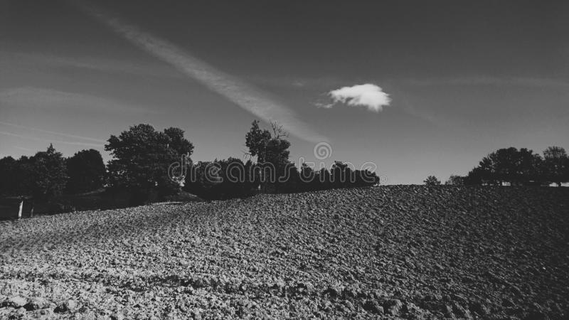 Black & White Country Trees & Fields Landscape royalty free stock photo