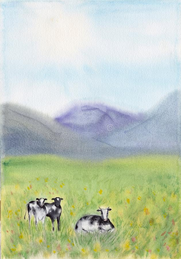 Black and white cows in a grassy meadow on a bright and sunny day in The Netherlands. Rural Landscape with Pasturing Cows. Dairy vector illustration