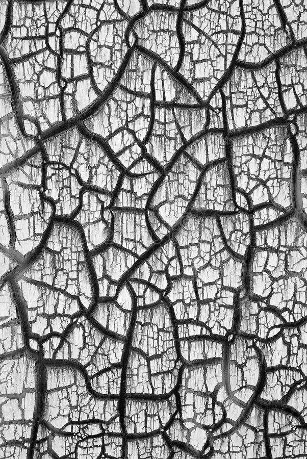 Black and white crack royalty free stock photos