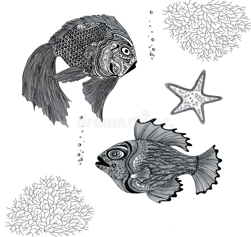 Black and white fish royalty free stock image