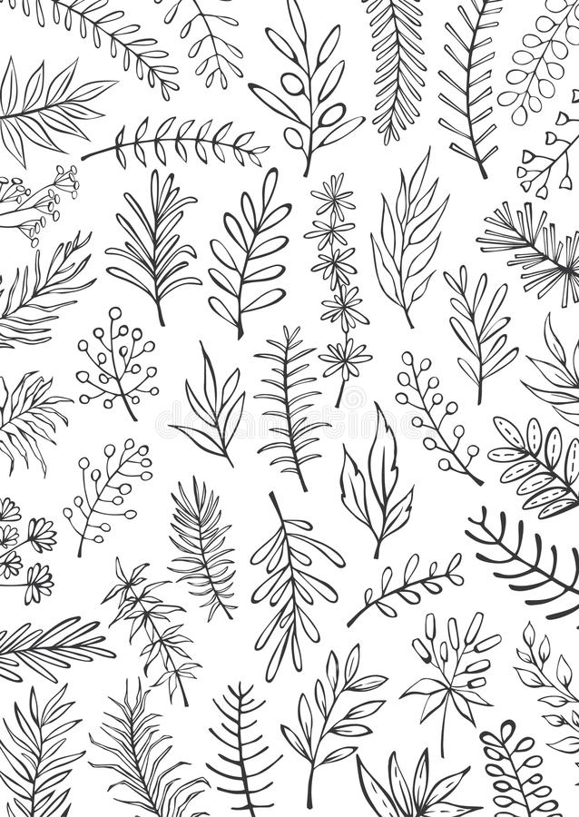 Black and white floral hand drawn farmhouse style outlined twigs branches background. Texture vector illustration