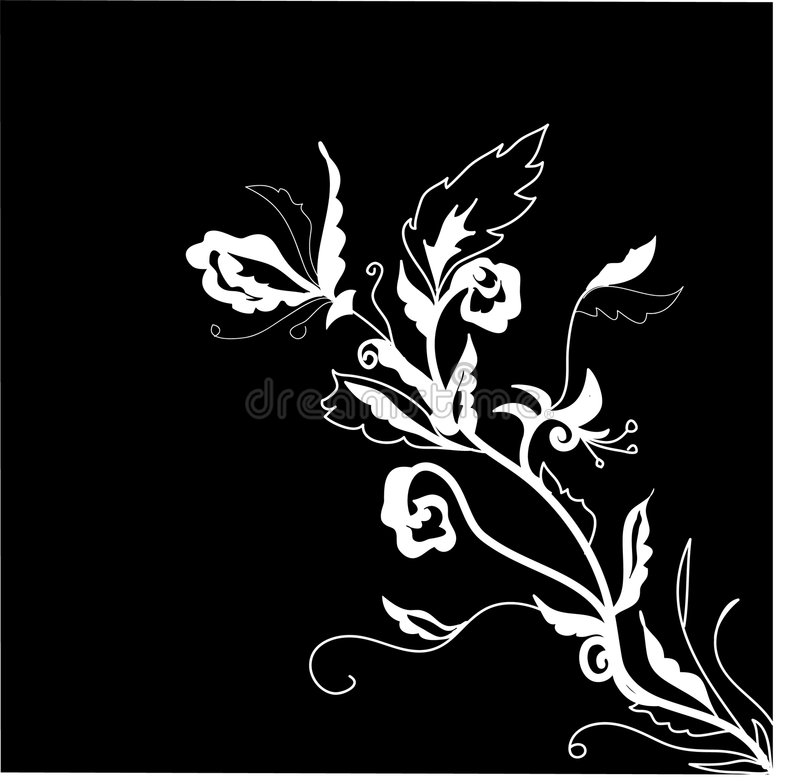 Black and white floral illustration