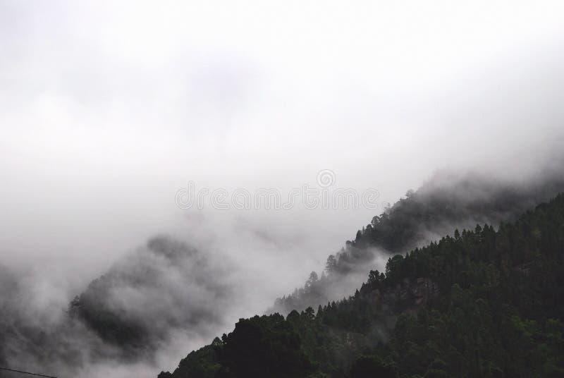Black, And, White, Fog stock images