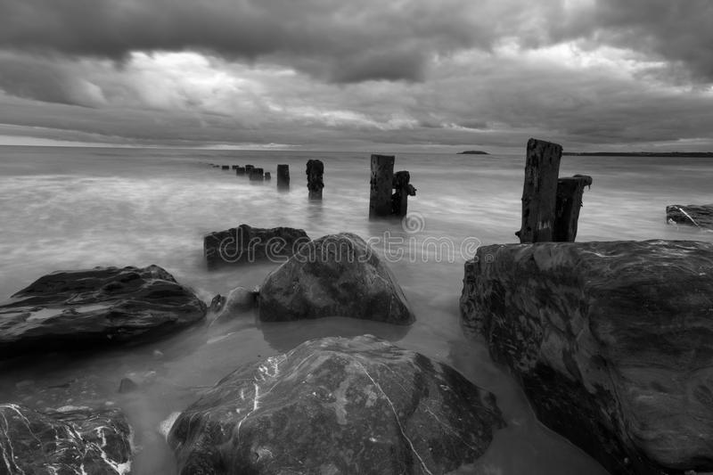 Black and White Groynes royalty free stock photo