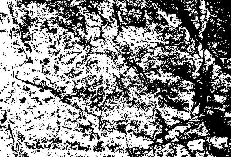 Grunge texture vector background White and black royalty free stock photos