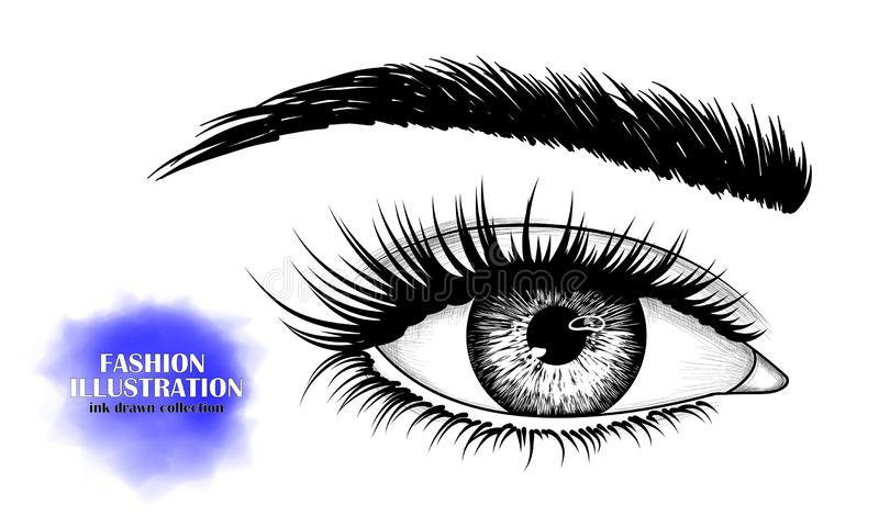 Black and white hand-drawn image of the human eye stock images