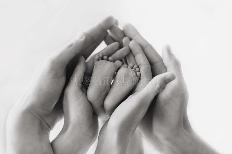 Black And White, Hand, Monochrome Photography, Photography royalty free stock image
