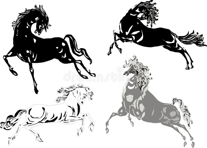 Download Black and white horse stock vector. Image of front, farm - 3695191