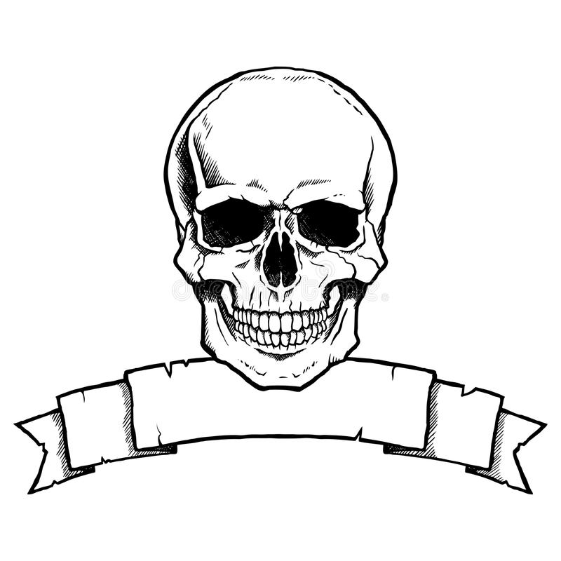Black and white human skull with ribbon banner royalty free illustration