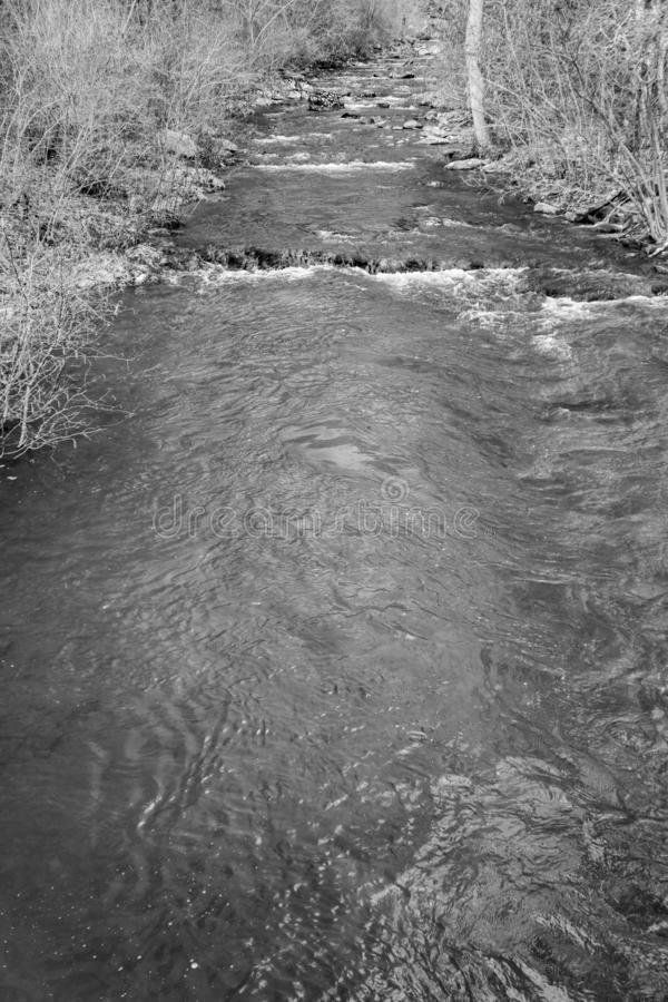 A Black and White Image of a Mountain Trout Stream in the Blue Ridge Mountains. A tranquil mountain trout stream located in the Blue Ridge Mountains of Botetourt stock photos