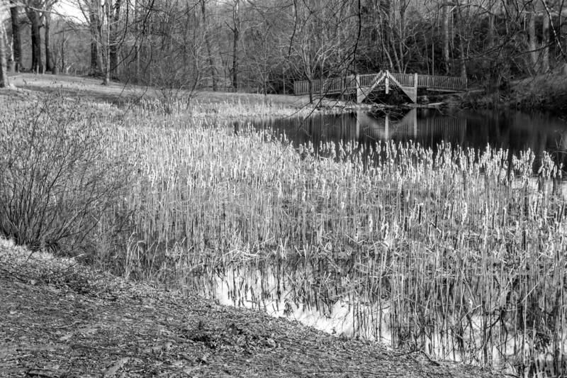 Black and White image of the Picnic area at the Smith Mountain Hydroelectric Dam. Sandy Level, VA – January 8th:Picnic area at the Smith Mountain royalty free stock photo