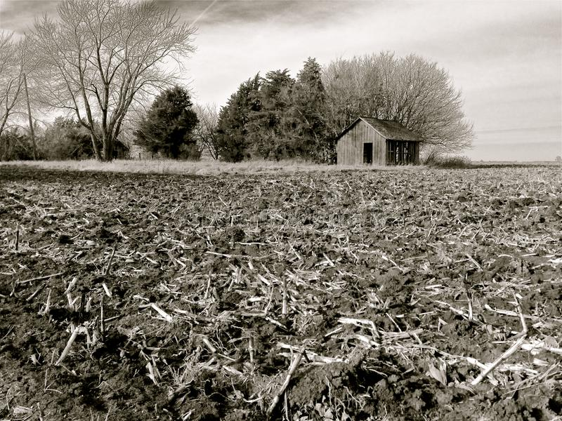 Rich, Black Soil of Illinois Farm Field After Harvest. Black and white image of rich, fertile, black soil after harvest in Illinois, USA, with trees and royalty free stock photo