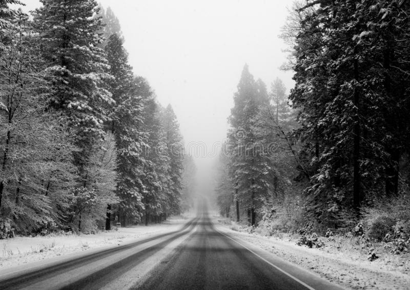 Black and white image of a road through a snowy landscape, fading into the horizon royalty free stock photo