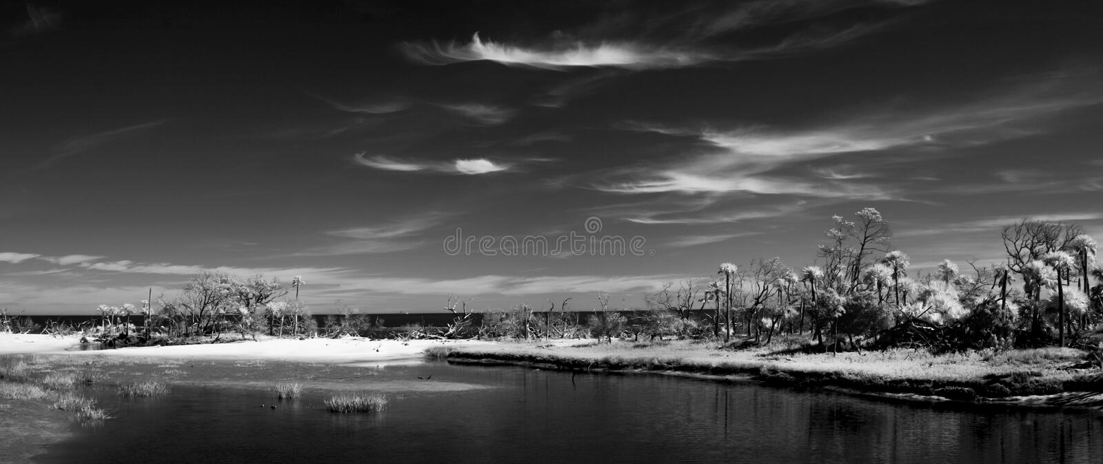 Black and white infrared photograph of the Atlantic coast of South Carolina, abstract surreal landscape stock photography