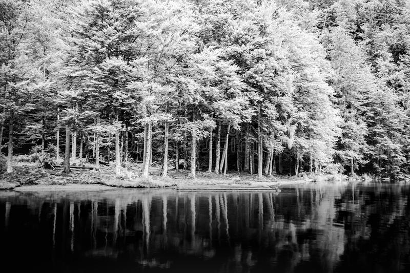 Black and white lake landscape with mountains. Cloudy and foggy view, abstract nature panorama stock image