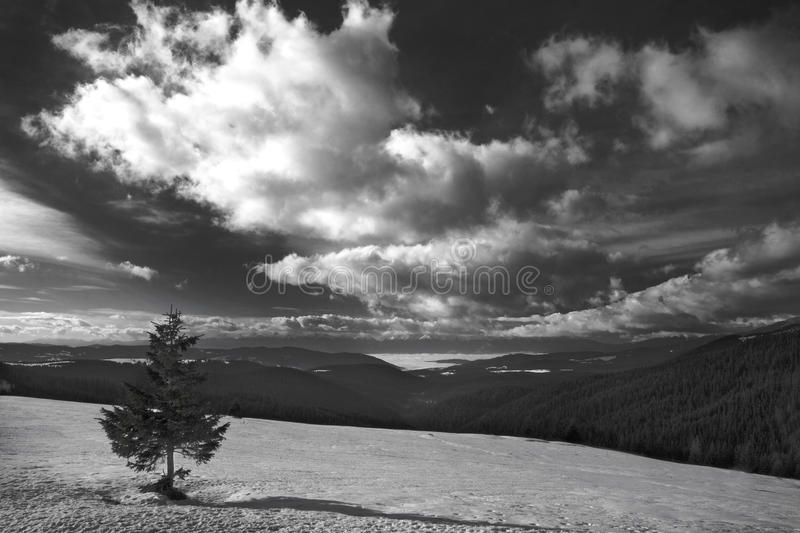 Black&white landscape royalty free stock image
