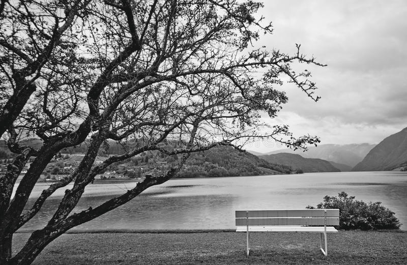 Download Black and white landscape stock photo. Image of bench - 25709258