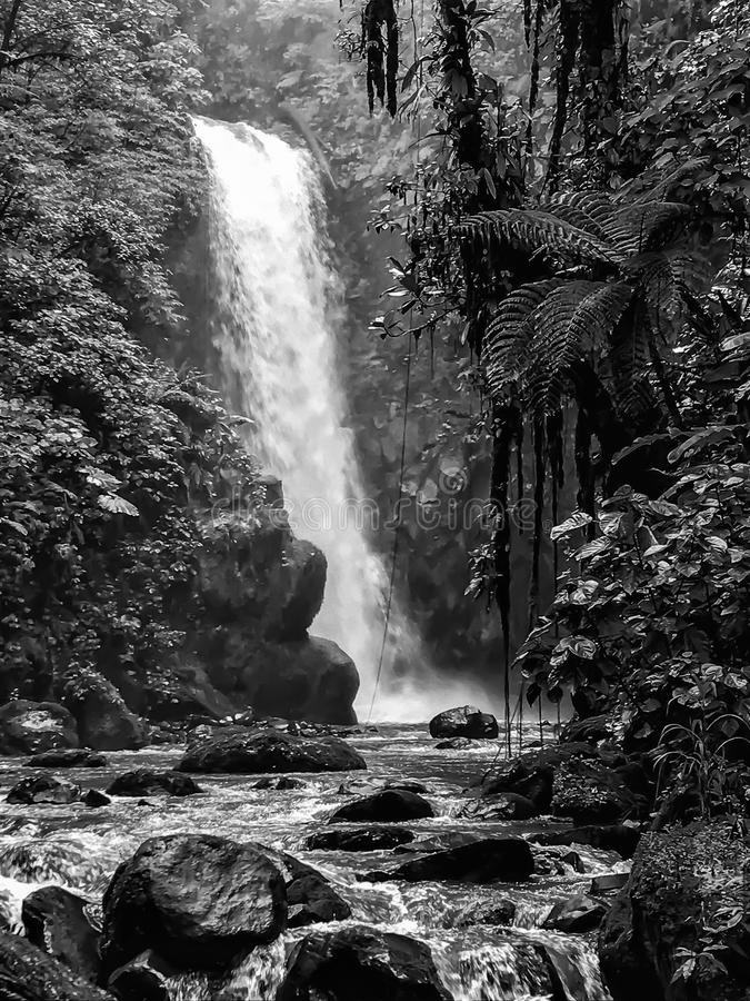 Black and White Large Jungle Waterfall and River stock photography