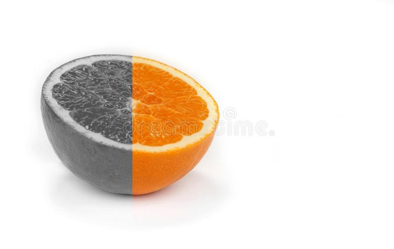 Black and white lemons and oranges friut with color one. stock image