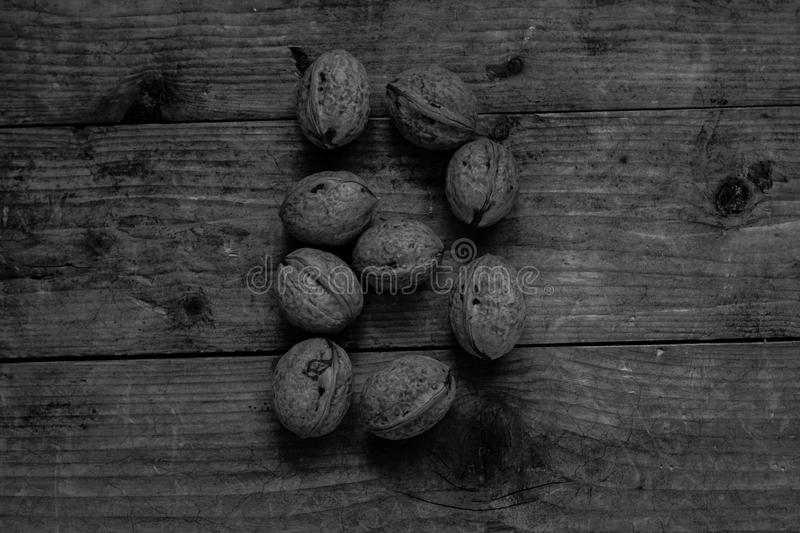 Black and white Letter B from walnuts. Black and white of top view of english alphabet made from walnuts on a wooden table. Letter B stock image